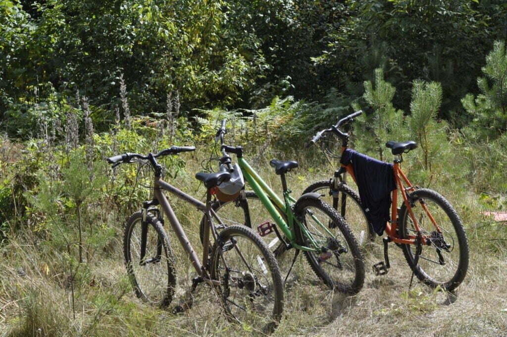 Велосипедные прогулки и велотуры выходного дня